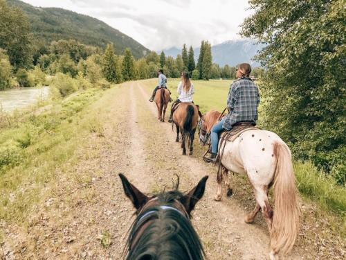 Horseback Riding with Copper Cayuse